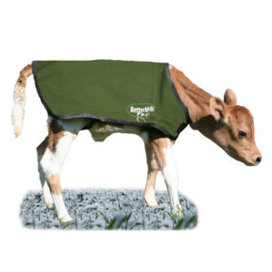 Bettermilk Jersey Calf Coats